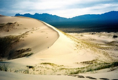 Mojave Wilderness: Kelso Dunes