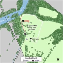 Mono Gambrill Trail Small
