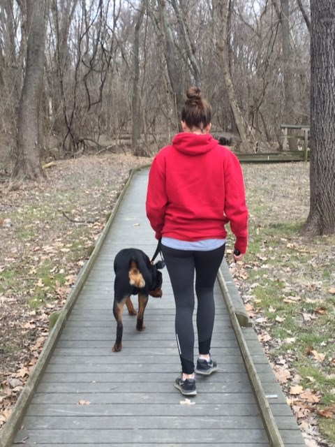 Owner and dog walk on a boardwalk trail