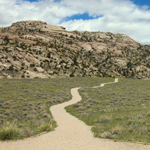 A dirt path leading to tree covered rock formations through the sagebrush at Martin's Cove, Wyoming