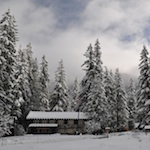 The historic Longmire Administration Building framed by snowy douglas fir.