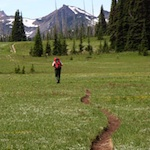A hiker at Grand Park in Mount Rainier National Park.