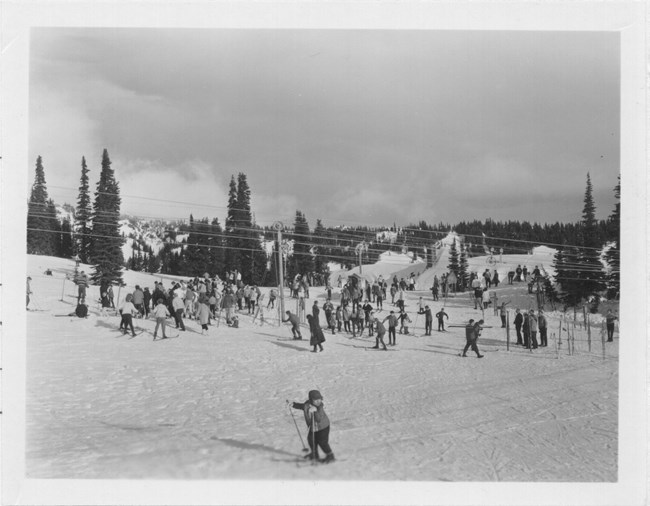 Skiers using a rope tow at Paradise in 1964.