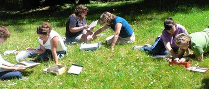 On a grassy field, teachers work in pairs at the 2005 teacher workshop held at Mount Rainier NP.