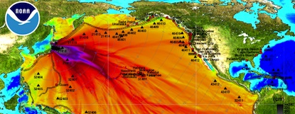 An excerpt from an ocean energy distribution forecast map for the 2011 Sendai earthquake developed by NOAA, with different degrees of wave amplitude indicated by colors ranging from blue (small amplitude) to red (large amplitude).