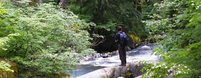 A hiker at Mount Rainier standing on a rock looking at Stevens Creek.