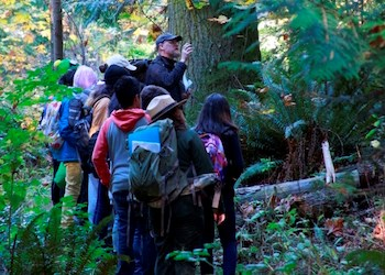Students grouped around a teacher look up at the forest surrounding them.