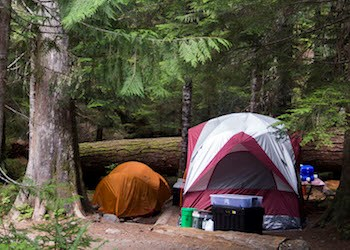 A tent and supplies set up in a campsite surrounded by trees.