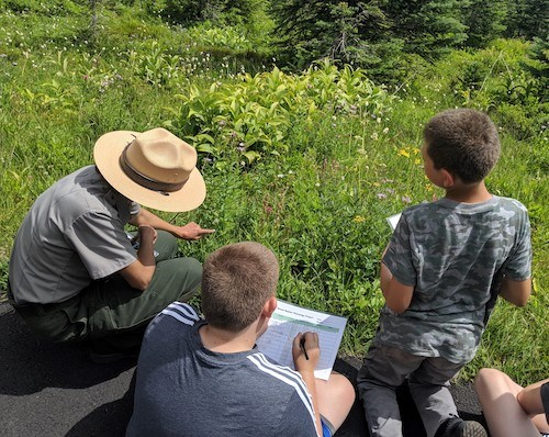 A crouching ranger points out wildflowers to several kids kneeling on the ground.
