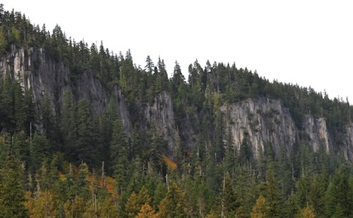 Steep cliffs of rock columns form a ridge above dense forest.
