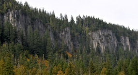 The rocky cliffs of Rampart Ridge rise above the trees at Longmire.