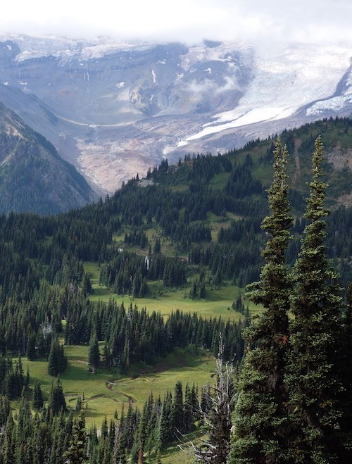 Patches of meadow and clumps of fir trees on a mountain slope beneath a glacier.