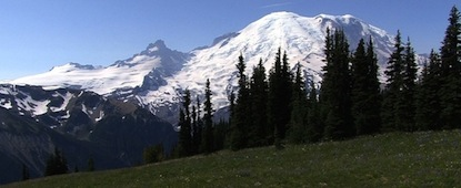A view of Mount Rainier from Sunrise, with subalpine meadow in the foreground.