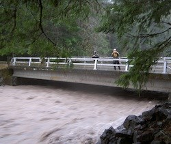 Tahoma Creek flowing under the Nisqually Road during the November 2006 flood.