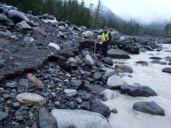 A park geologist stands at the edge of the Nisqually River holding a tape measure up to the top of a cut in the bank sediment eroded by the outburst flood.