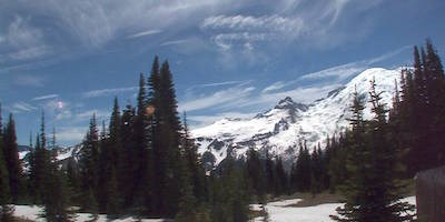 Still image from the Sunrise Mountain webcam showing Mount Rainier and a semi-forested meadow.