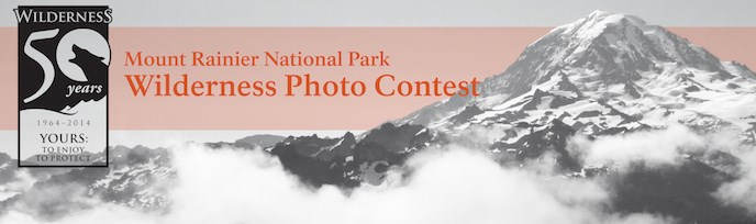 "A black and white photo of Mount Rainier with the Wilderness 50th logo and the text ""Mount Rainier National Park Wilderness Photo Contest"""