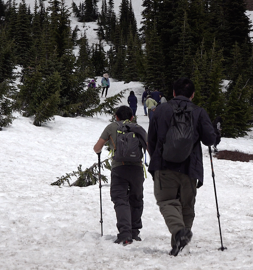 Two hikers with hiking poles and backpacks follow other people up a snow covered slope.