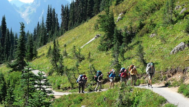 Several hikers with large packs walk along a trail through subalpine meadows.