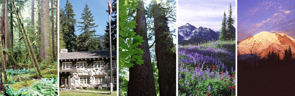 Five scenes of Mount Rainier National Park (left to right): temperate rain forest, historic building, old growth forest, subalpine meadow, the mountain at sunrise.