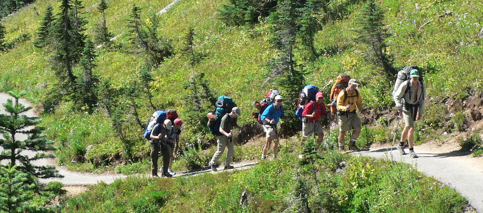 Several backpackers with large packs hike along a trail through a meadow.