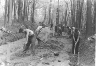 a historic black and white photo of Civilian Conservation Corps workers using hand tools to dig in a forest landscape