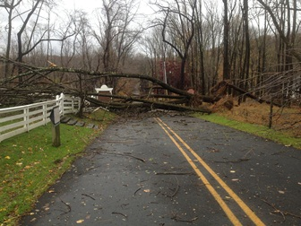 Western Ave entrance to Jockey Hollow after Hurricane Sandy