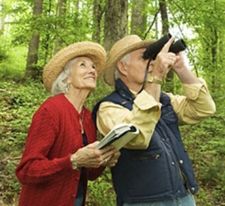 Bird watching is a great outdoor activity all year long.