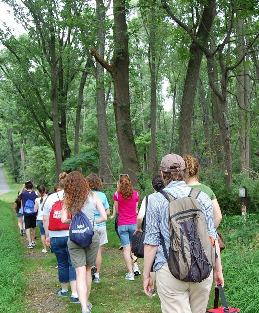 A group of visitors enjoy a hike on a park trail.
