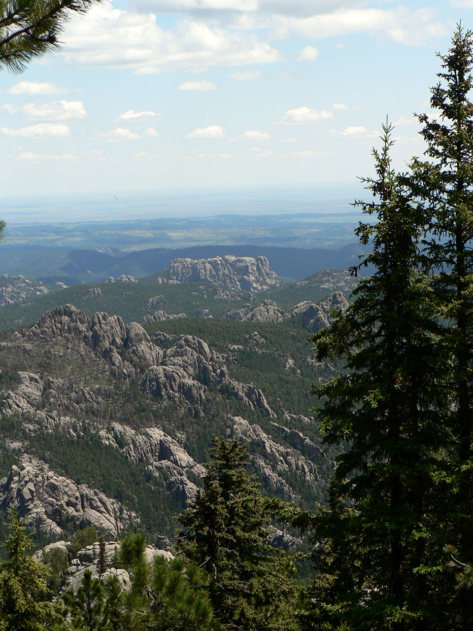 View of Mount Rushmore from behind with the plains in the distance.