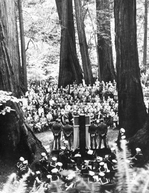 historic image of men & women gathering among a tall stand of redwood trees