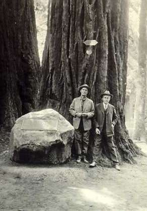 Old black & white photograph of William Kent (donor & benefactor of Muir Woods) & Stephen Mather (1st Director of the National Park Service) standing next to a large boulder with a plaque about Gifford Pinchot. The redwood tree they are leaning on was dedicated to Gifford Pinchot, The redwood tree name as the Pinchot Tree may be seen today.