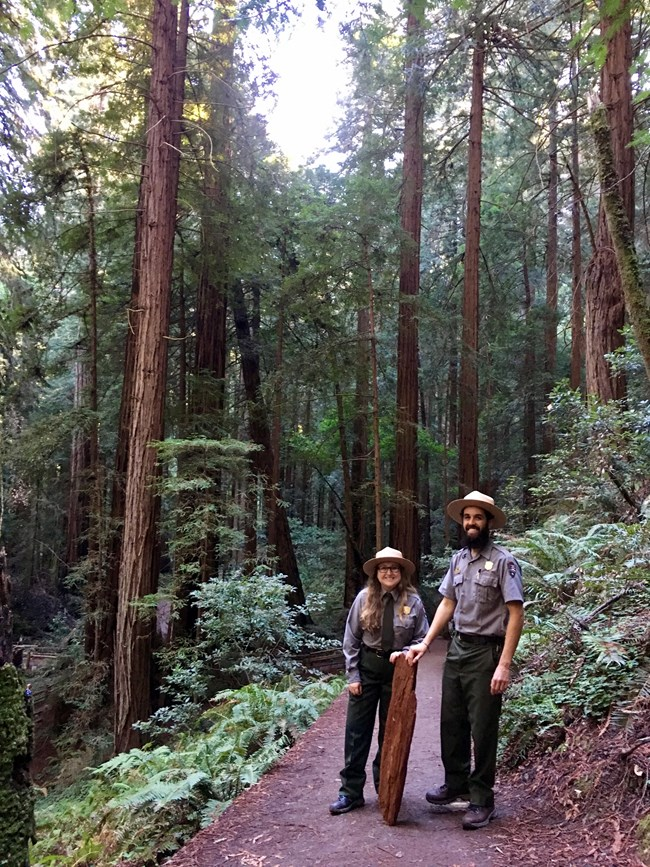 Two park rangers standing on a trail in the redwood forest.