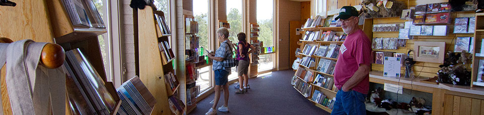 people looking at bookshelves