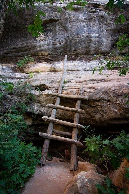short, primitive wooden ladder resting against canyon ledge