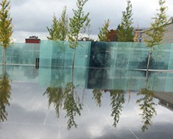 AVD4L reflecting pool, trees and wall