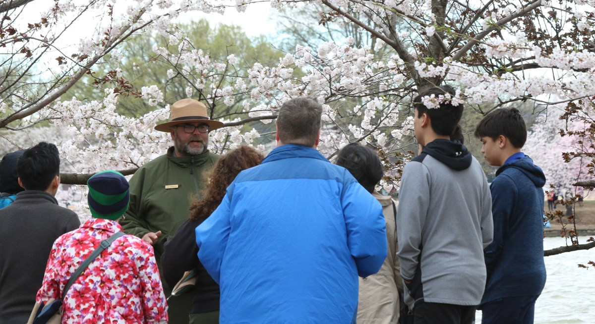 Ranger speaks to a group about Cherry Blossoms.