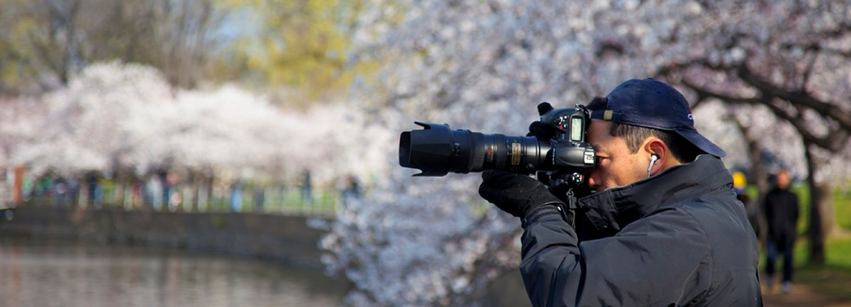 Photographer with a sizable camera lens near cherry blossom trees and water