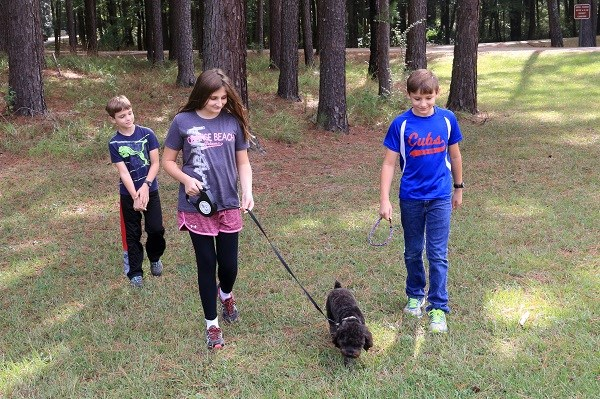 Three children and a small black dog are walking on a shaded trail.
