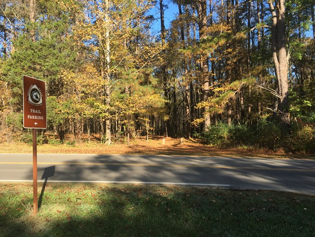 The trail entrance leading to the Tupelo only bicycle campground
