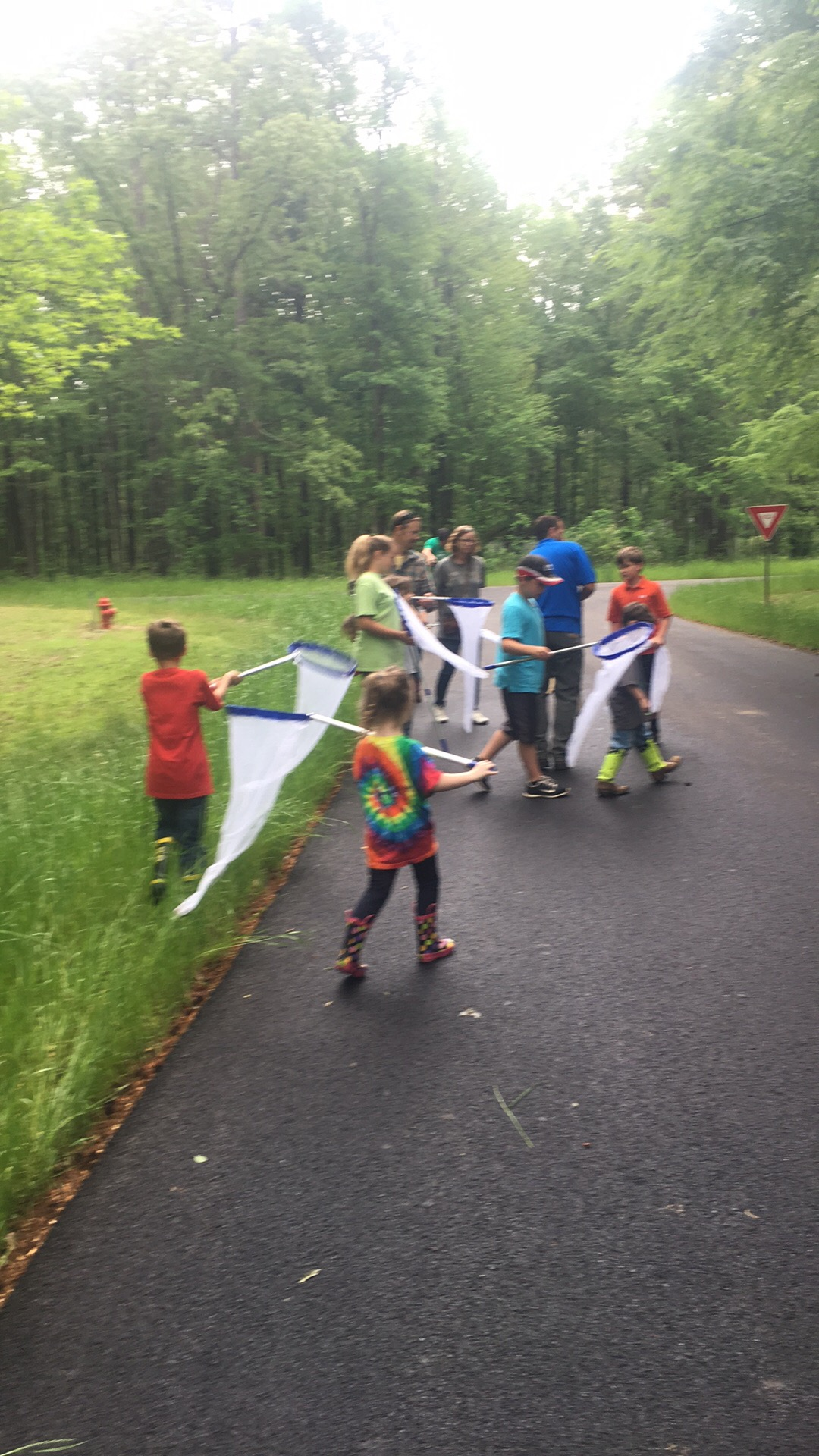 Young children using butterfly nets to capture insects.