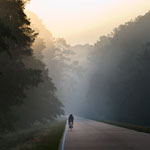 a bicyclist along the natchez trace parkway