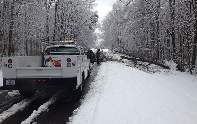 Maintenance workers are getting ready to clear a fallen tree off of a snow covered road.