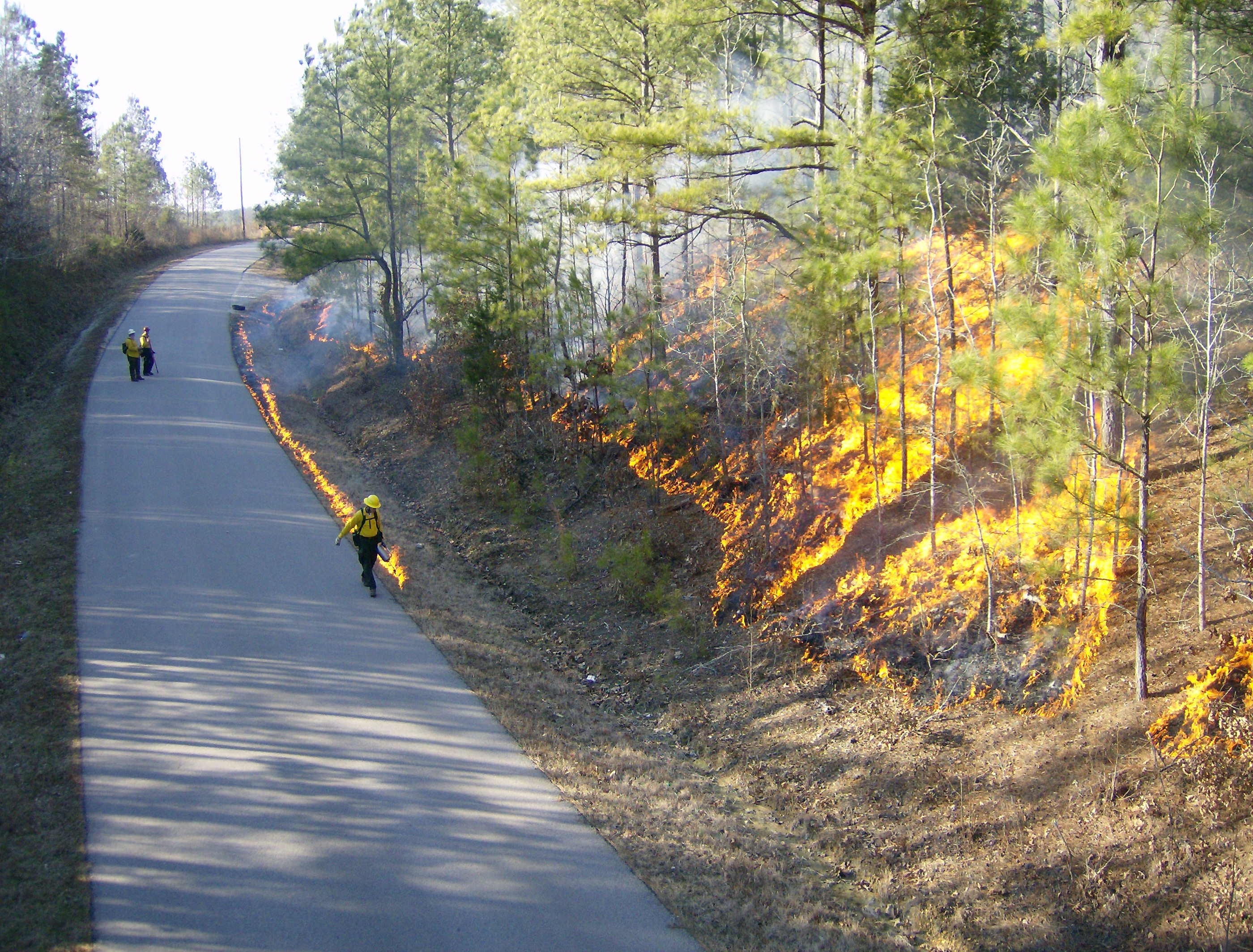 Prescribed burn at Twentymile Bottom Overlook.