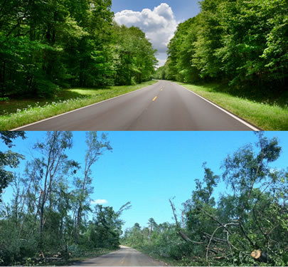 A section of the Natchez Trace Parkway before the storms with large trees, and the same section  after the storms, with only a few trees remaining.