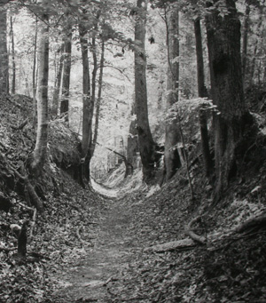 Portion of Sunken Trace image from Cleghorn Photo Exhibit.