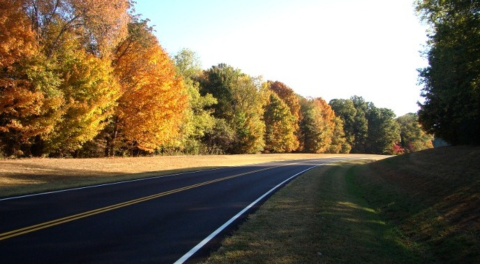 Scenic view of trees changing color along the Parkway in Autumn.