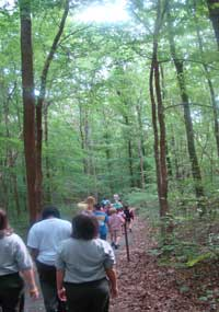 Visitors attend a ranger-guided walk.