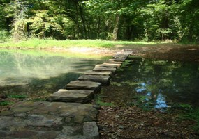 A view of the stepping stones at the Rock Spring Nature Trail.