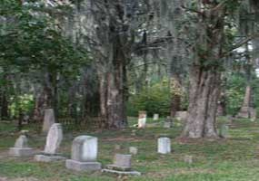 The Rocky Springs Cemetery contains old trees covered with Spanish Moss.